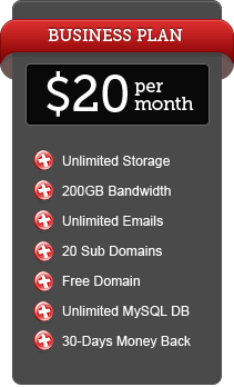 Business Webhosting